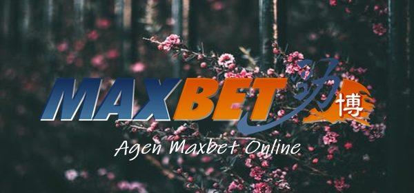 Agen Maxbet Online Berapa Keuntungan Para Member Profesional